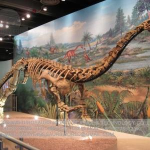 Animatronic Dinosaur & Animal , Dinosaur Costume - Dinosaurs