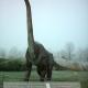 DWD201 Brachiosaurus.