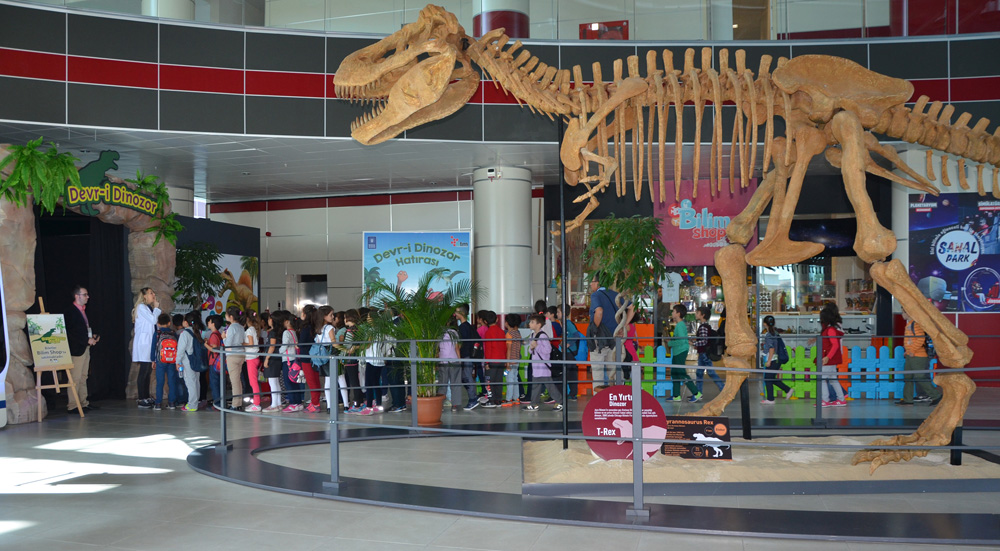 How To Making A Complete Dinosaur Fossils Replica ?